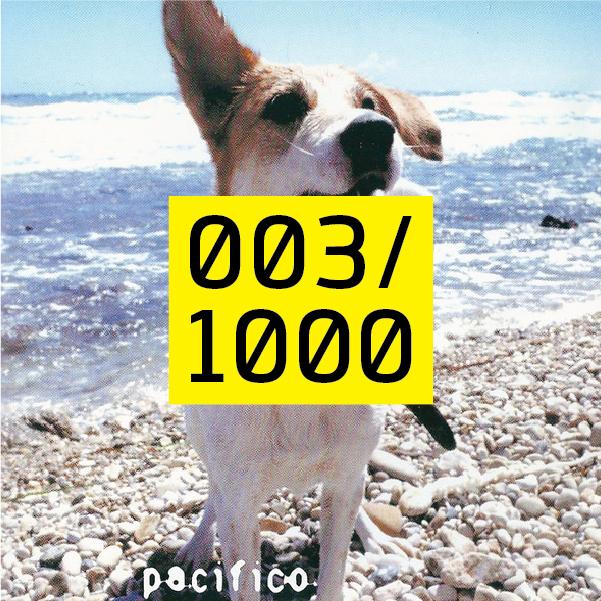 Copertina album pacifico 2001